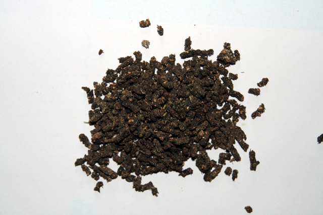 [http://www.sci.muni.cz/botany/salicornia/granule/gr anule.jpg]