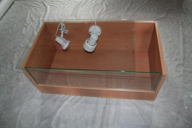 [http://www.sci.muni.cz/botany/salicornia/stul/zs05. jpg]