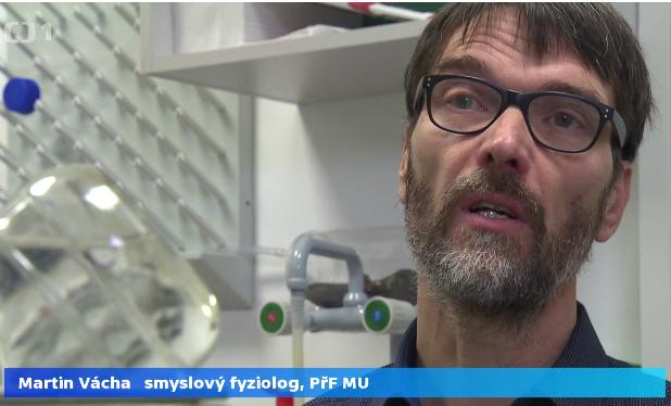 Výzkumný tým Martina Váchy v České televizi