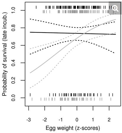 The hidden function of egg white antimicrobials: egg weight-dependent effects of avidin on avian embryo survival and hatchling phenotype