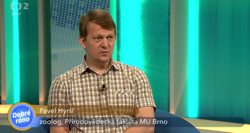 Pavel Hyršl about life of bees in the Czech television!