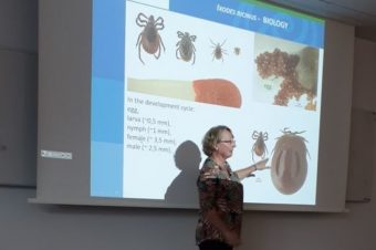 Infectivity and geographic distribution of ticks – sharing experience with colleagues from Poland