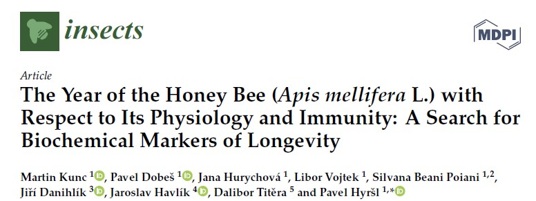 The Year of the Honey Bee (Apis mellifera L.) with Respect to Its Physiology and Immunity: A Search for Biochemical Markers of Longevity