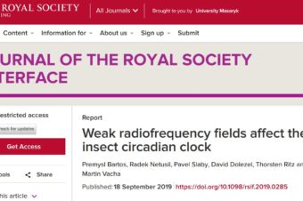 Weak radiofrequency fields affect the insect circadian clock