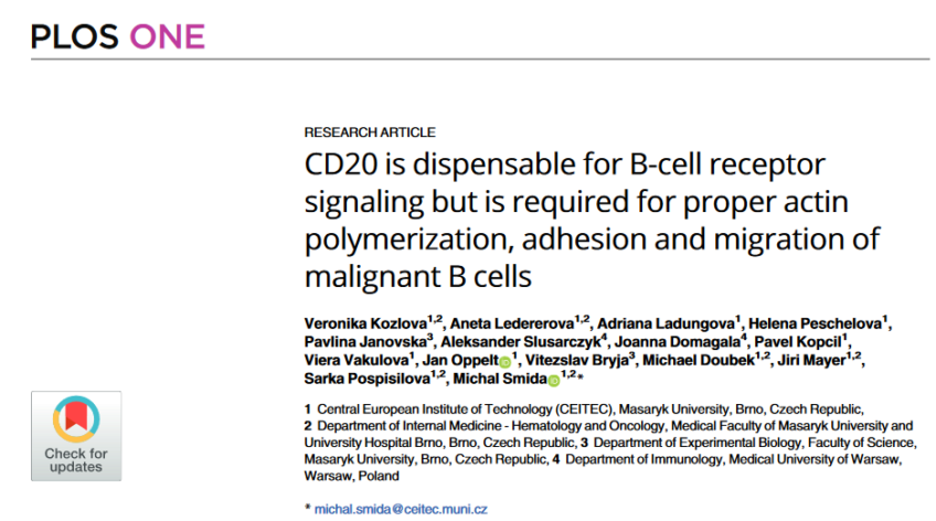 CD20 is dispensable for B-cell receptor signaling but is required for proper actin polymerization, adhesion and migration of malignant B cells