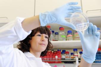 Visit of One of the Key Inventors of Crispr–Cas9 Technology – Prof. Emmanuelle Charpentier