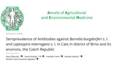 Seroprevalence of Antibodies against Borrelia burgdorferi s. l. and Leptospira interrogans s. l. in Cats in district of Brno and its environs, the Czech Republic