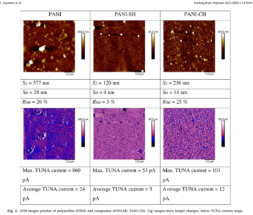 Conducting composite films based on chitosan or sodium hyaluronate. Properties and cytocompatibility with human induced pluripotent stem cells